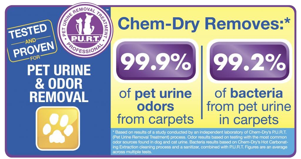 pet urine cleaning lees summit