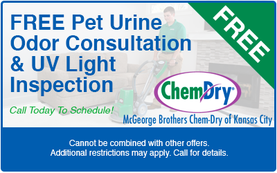 Carpet Cleaning Coupons Mcgeorge Brothers Chem Dry Of