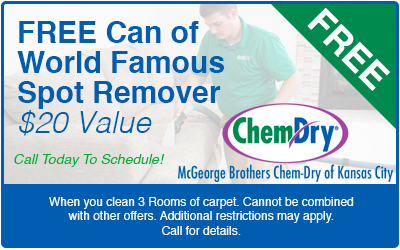 professional carpet cleaning coupon