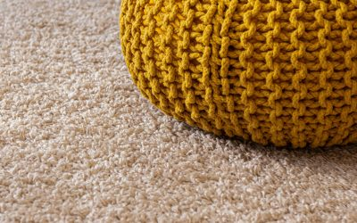 How Often Should I Schedule Professional Carpet Cleaning?